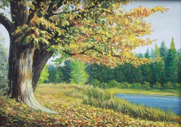 Природа картинки нарисованные, охрана природы картинки красивые 7