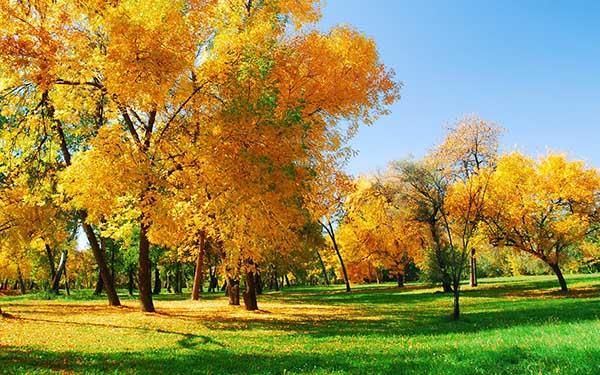 Прикольные и красивые - картинки, фото природы 2