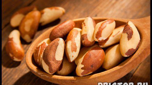 Бразильский орех - полезные свойства и противопоказания 1