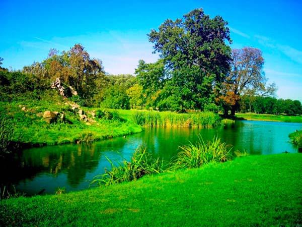 Картинки лето природа, красивые картинки пейзажи природы 9