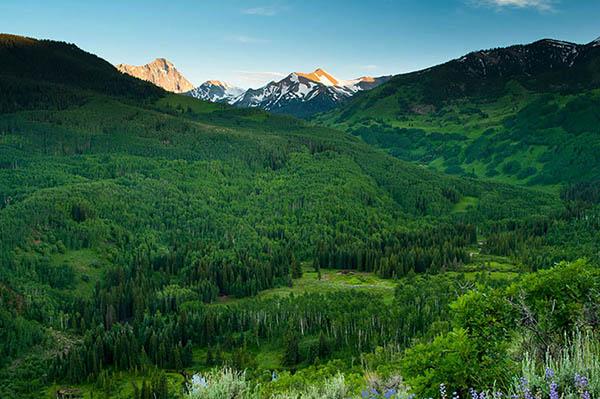 Картинки лето природа, красивые картинки пейзажи природы 13