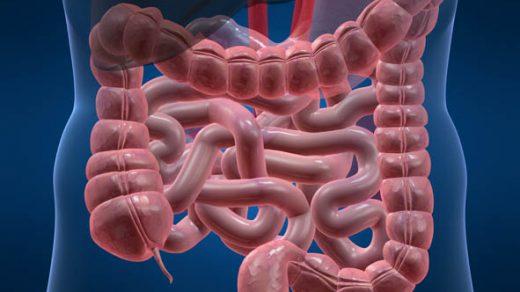 Дисбактериоз кишечника - симптомы лечение у взрослых и детей 2