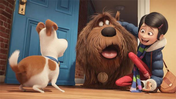 Картинки из мультика - Тайная жизнь домашних животных 7