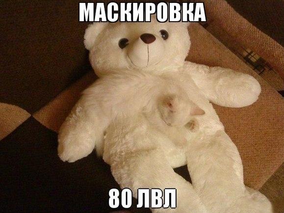 Картинки и фото самых смешных животных с надписями - смотреть 1
