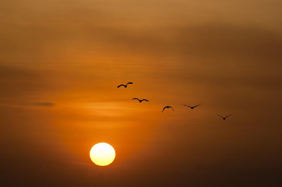 Красивые картинки заката, закат солнца картинки и фото красивые 10