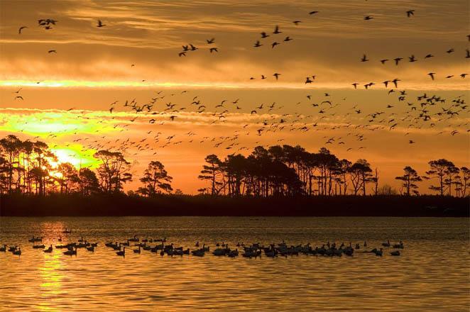 Красивые картинки заката, закат солнца картинки и фото красивые 15