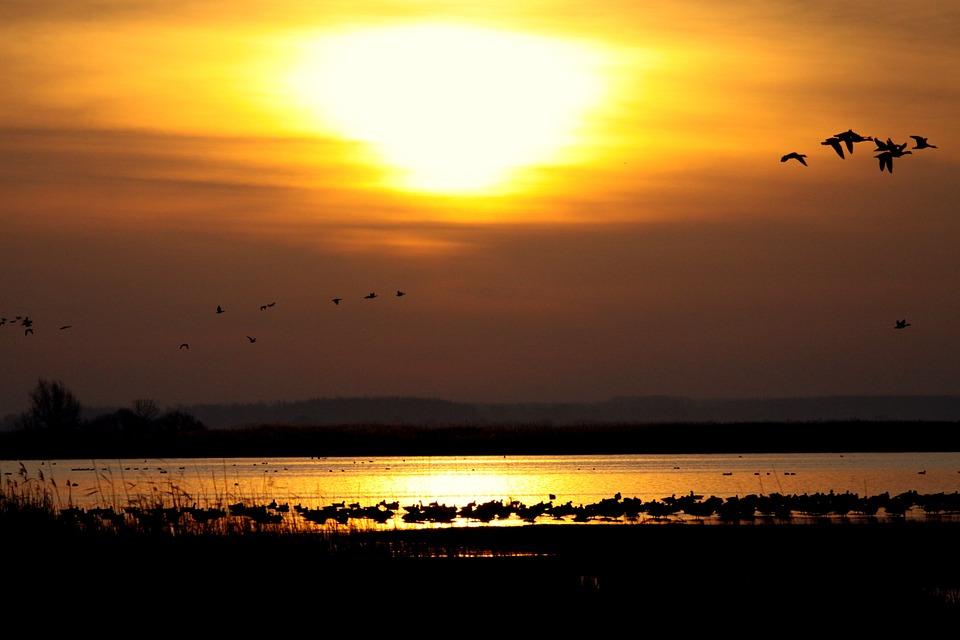 Красивые картинки заката, закат солнца картинки и фото красивые 9