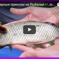 Приколы на рыбалке - видео смотреть бесплатно, смешные, ржачные