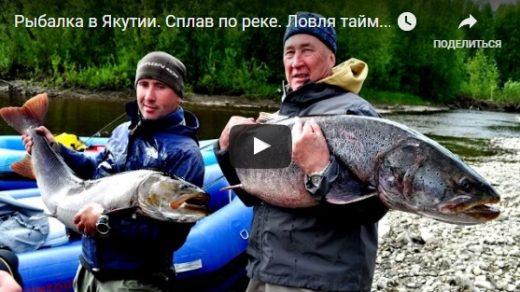 Рыбалка в Якутии - смотреть видео бесплатно, лучшие, классные, подборка