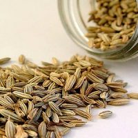 Семена укропа - лечебные свойства и противопоказания, применение 2