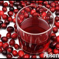 Толокнянка - лечебные свойства и противопоказания, применение 3