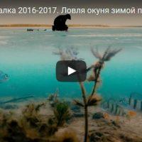Удивительная и интересная рыбалка - видео смотреть бесплатно