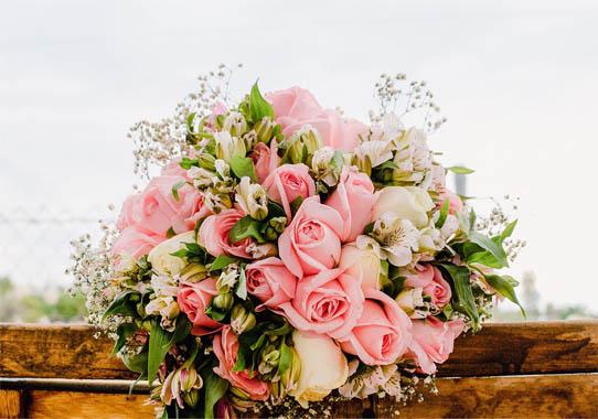 Цветы розы - фото, картинки, красивые, удивительные, интересные 13