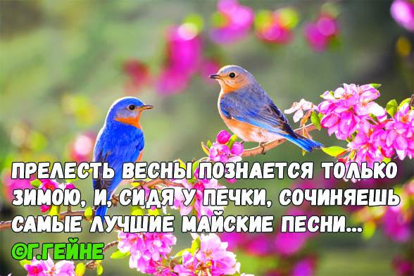 Цитаты про весну - красивые цитаты, со смыслом, высказывания и фразы 1