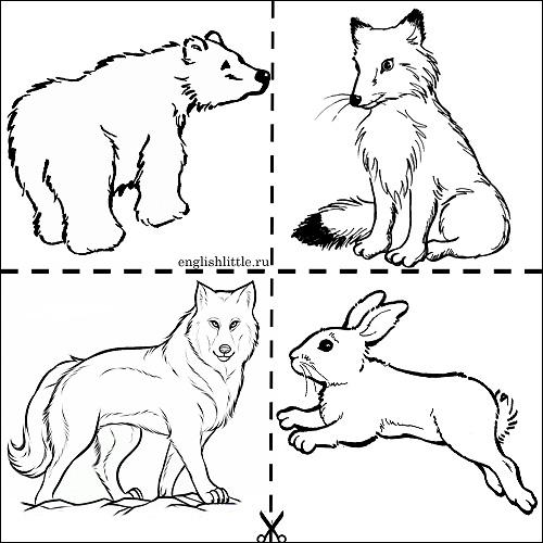 Черно белые картинки животных для детей - смотреть бесплатно 1