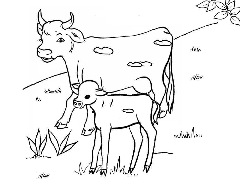 Черно белые картинки животных для детей - смотреть бесплатно 4