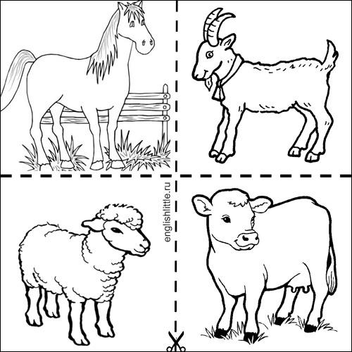 Картинки домашних животных для детей по одному раскраска