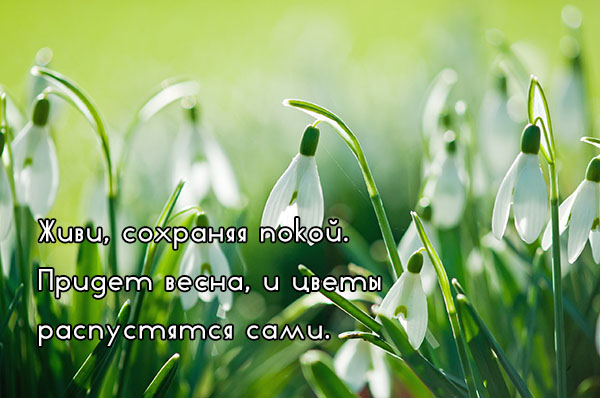 Цитаты про весну и любовь - красивые, удивительные, со смыслом 5