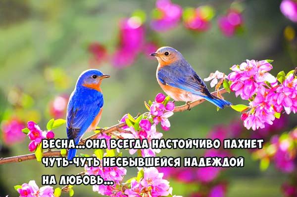 Цитаты про весну и любовь - красивые, удивительные, со смыслом 10
