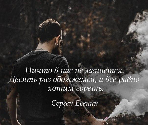 Интересные и красивые цитаты про жизнь и любовь - читать 8