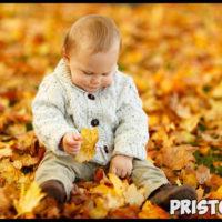 Как одеть малыша на прогулку осенью в детский сад 1