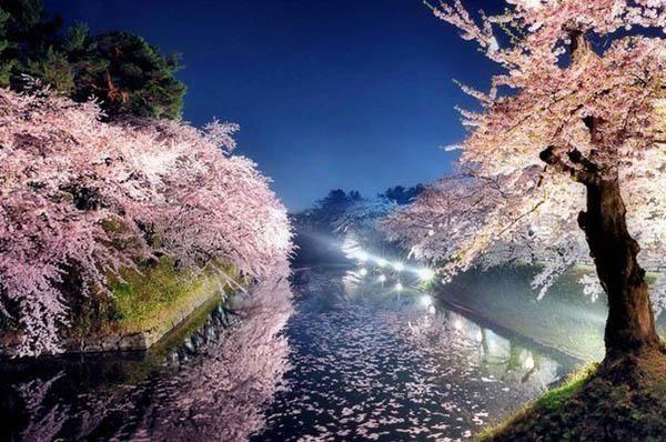 Красивая и удивительная природа земли - смотреть фото и картинки 10