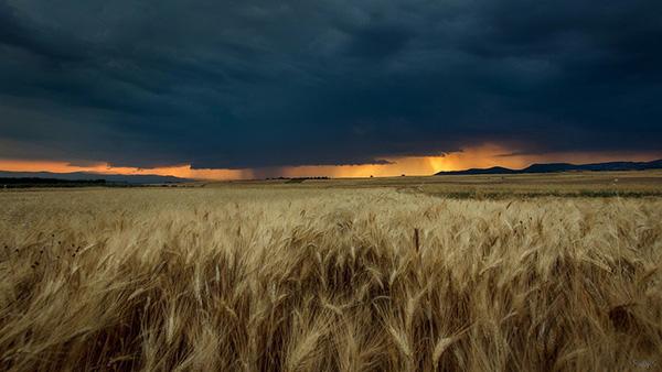 Красивая и удивительная природа земли - смотреть фото и картинки 18