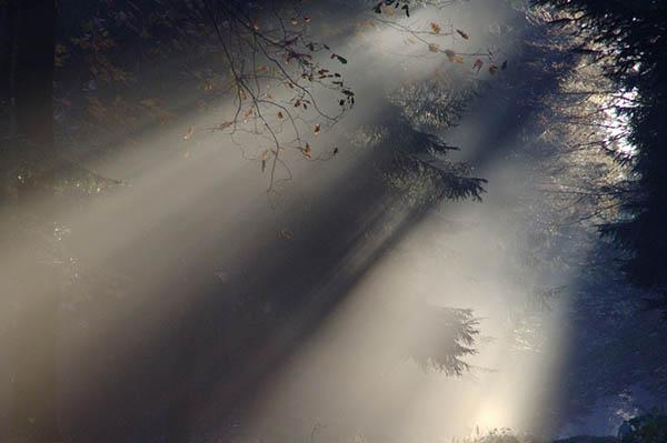 Красивые и удивительные явления природы - смотреть фото 11