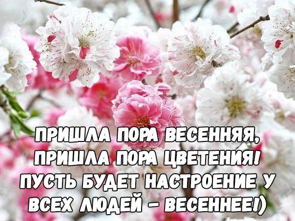 Красивые цитаты про весну - короткие, новые, свежие, со смыслом 4