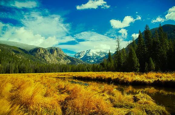 Красивый и удивительный мир природы - картинки, фото, смотреть 14