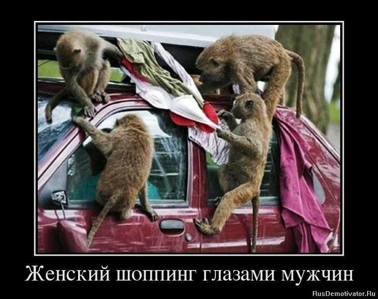 Очень смешные демотиваторы до слез - новые, свежие, 2017 17