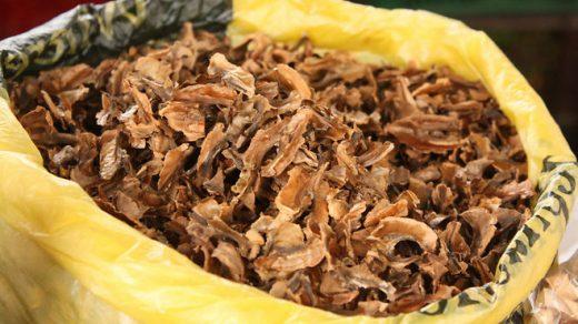 Перегородки грецких орехов - лечебные свойства и противопоказания 2
