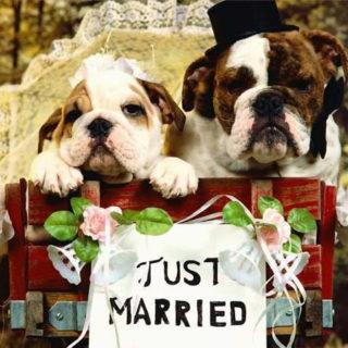 Поздравления С Днем Свадьбы - красивые картинки и открытки 2