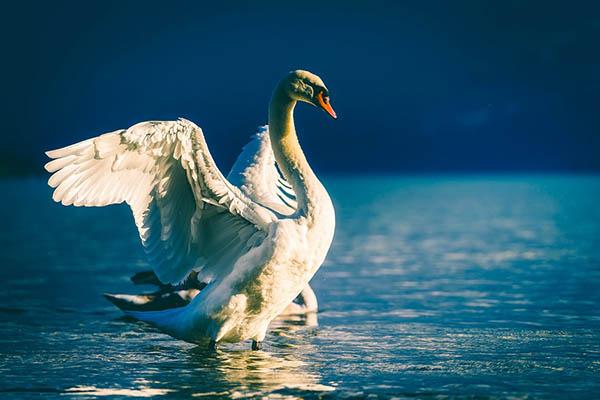 Прекрасная и удивительная природа фото - красивые, смотреть 16