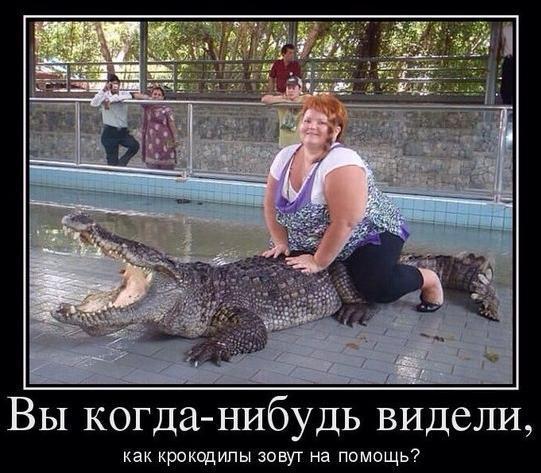 Самые смешные люди в мире - фото и картинки, смотреть бесплатно 4