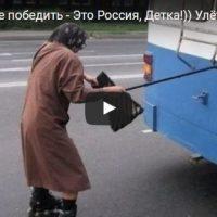 Смешные видео до слез смотреть бесплатно - лучшая подборка