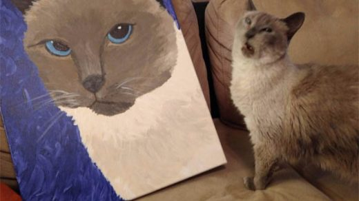 Смешные картинки про кошек до слез - смотреть бесплатно 11