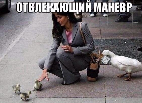 Фото приколы про девушек - смотреть бесплатно, смешные, ржачные 2