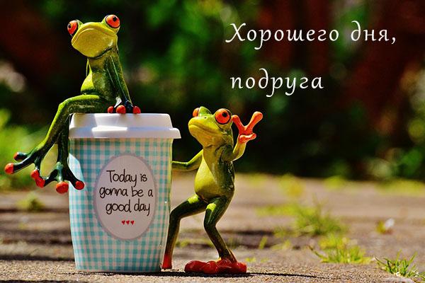 Хорошего дня подруга - картинки, фото, пожелание, открытки 2