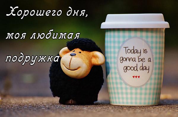 Хорошего дня подруга - картинки, фото, пожелание, открытки 9