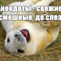 Анекдоты - свежие, смешные, до слез, читать бесплатно, онлайн заставка