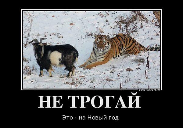 Веселые и смешные демотиваторы про животных - смотреть онлайн 1