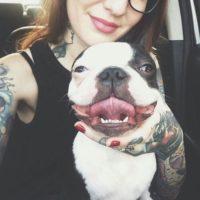 Картинки на аватарку в ВК - прикольные, крутые, новые, красивые 10