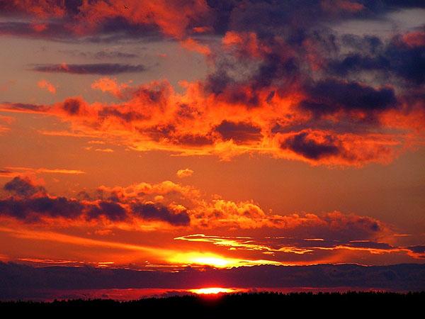 Красивые картинки лета - смотреть бесплатно, скачать онлайн 2