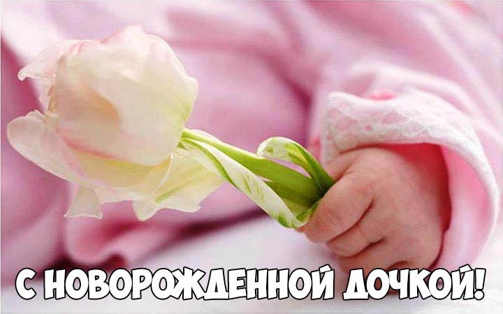 Красивые поздравления с новорожденной дочкой маме - скачать, смотреть 10