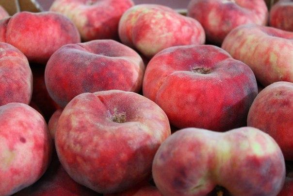 Персик инжирный - описание, полезные свойства, калорийность 1