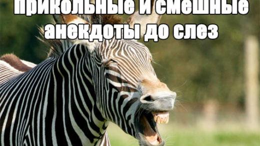 Прикольные и смешные анекдоты до слез - читать бесплатно заставка