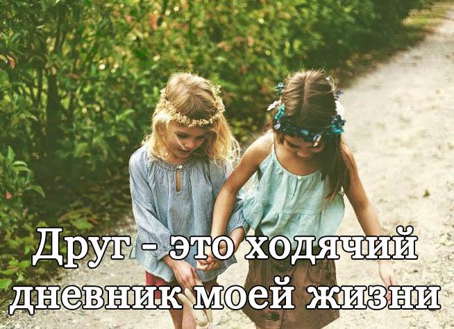Прикольные и смешные цитаты про друзей - читать бесплатно 7
