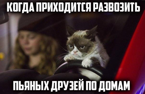 Ржачные и смешные картинки про друзей - смотреть бесплатно, онлайн 3