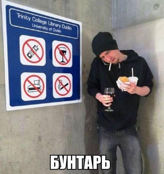 Самые смешные картинки с надписями - смотреть онлайн без регистрации 9